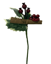 Variegated holly leaf pick with pomegranates, cinnamon stick and small berries Image