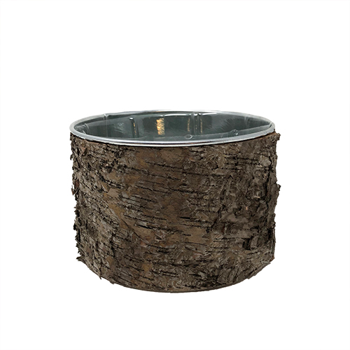Tree Wood Round Container Image