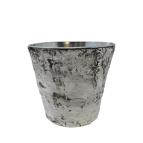 Birch wood Round Container Image